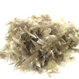 Polish Quills Wild Duck CDC Feathers - Natural Dun  (2 Gram)